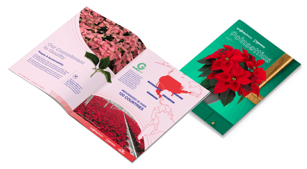 2021 Syngenta Flowers & Beekenkamp Poinsettia Catalog