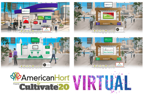 Cultivate'20 Virtual at Syngenta Flowers