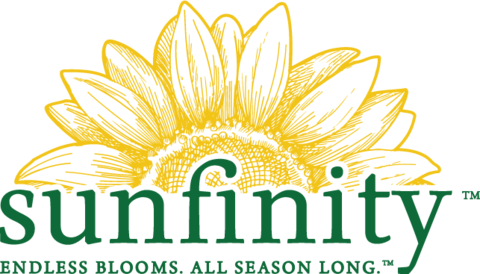 Sunfinity Sunflowers Logo