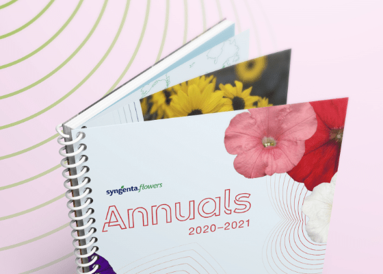 Annuals Catalog Cover