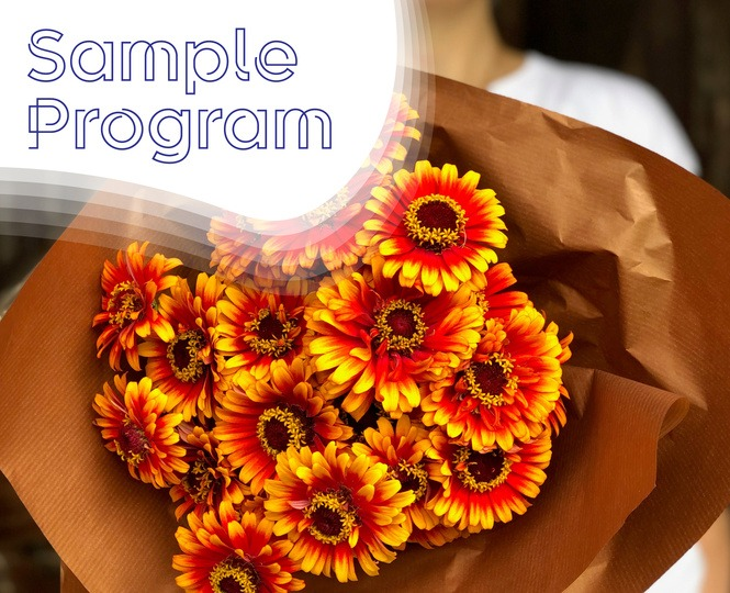 Cut Flower Sample Program with Zowie! Zinnia