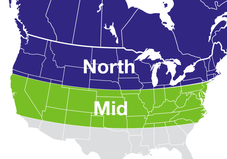 North and Mid Region
