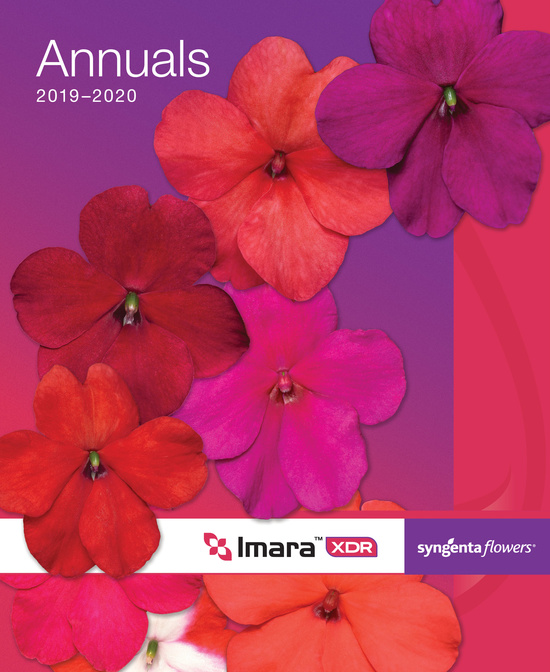 2019-2020 Syngenta Flowers Annuals Catalogs Cover