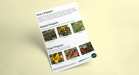 Pick a Pepper Container Gardening