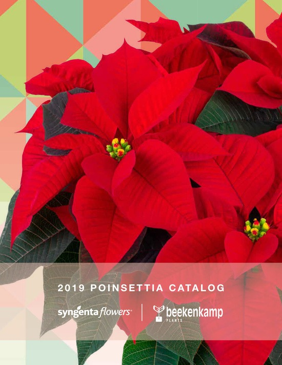 2019 Poinsettia Catalog Cover