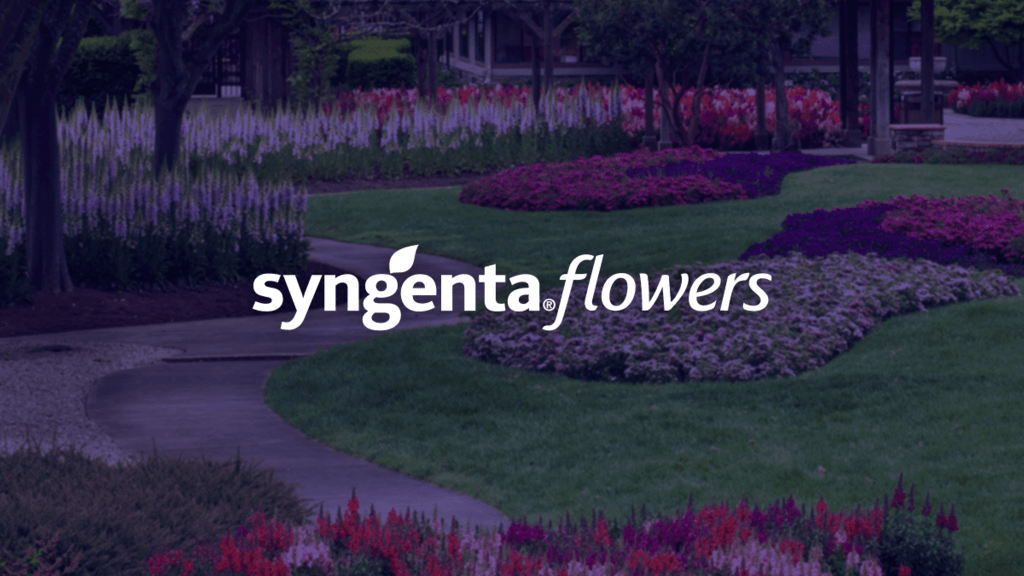 Syngenta Flowers expands sales team with Kelli Gibson