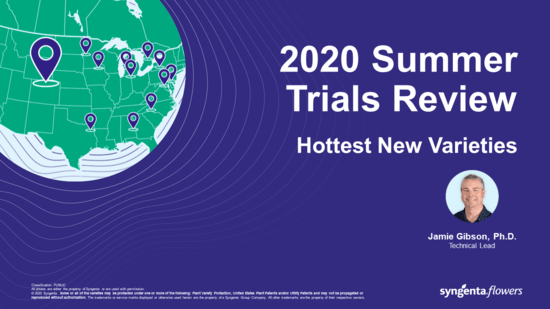 Summer Trials Webinar